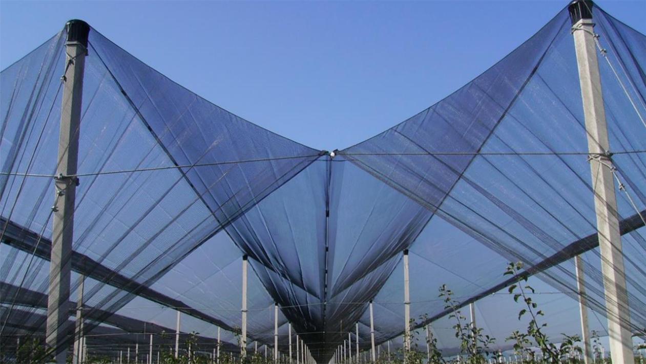 shade house greenhouse
