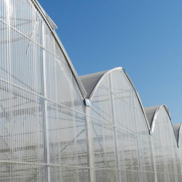 ورق های پلی کربنات تک جداره (کروگیت)