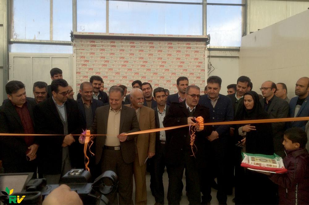 افتتاح مدرنترین پروژه گلخانهای گل رز استان فارس